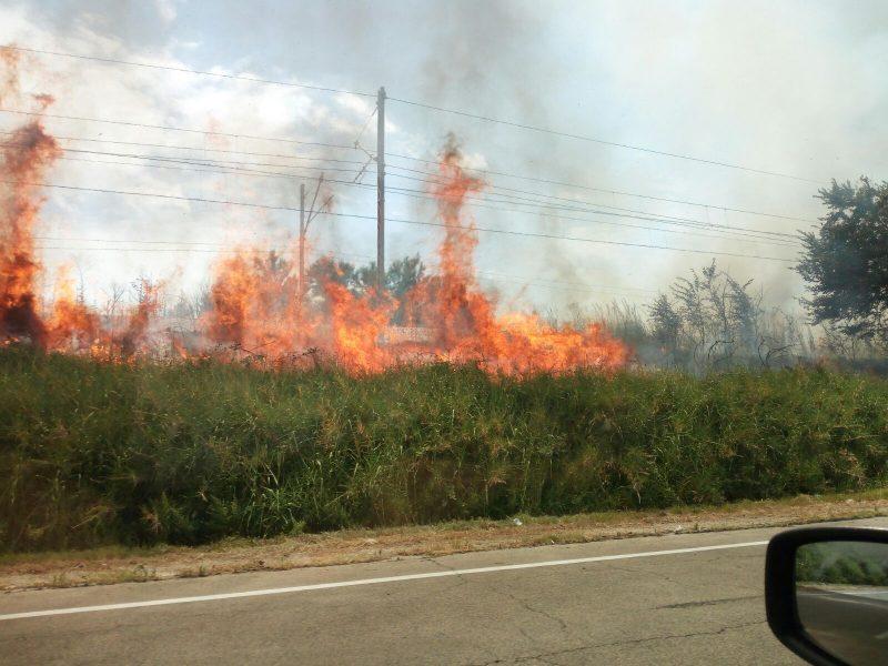 Incendio a Lucito, vigili del fuoco impediscono che arrivi alle case