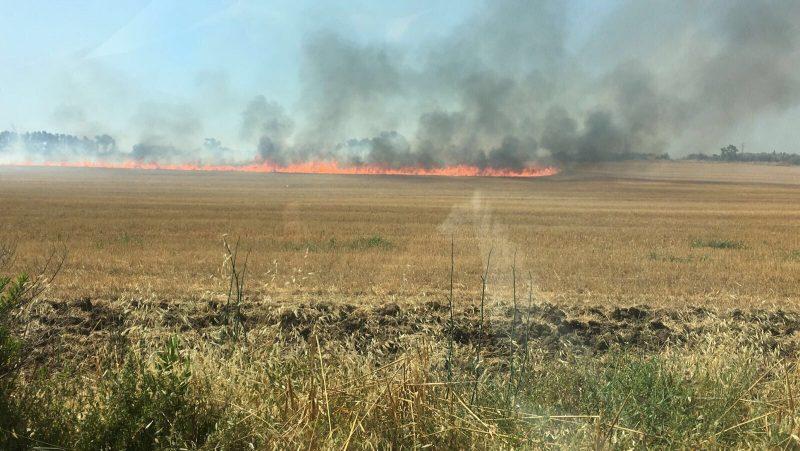 Ancora incendi sulla costa, fiamme vicino all'ex fornace