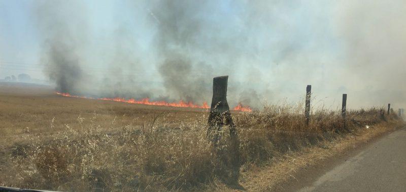 Il fuoco devasta la costa