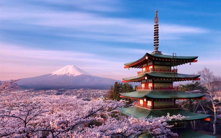 Giappone-Molise, andata e ritorno