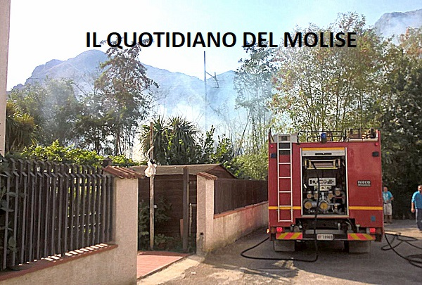 Paura a Venafro, incendio lambisce le abitazioni