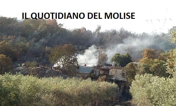 Emergenza incendi, 40 ettari in fiamme a Montaquila. Morti diversi animali (FOTO)