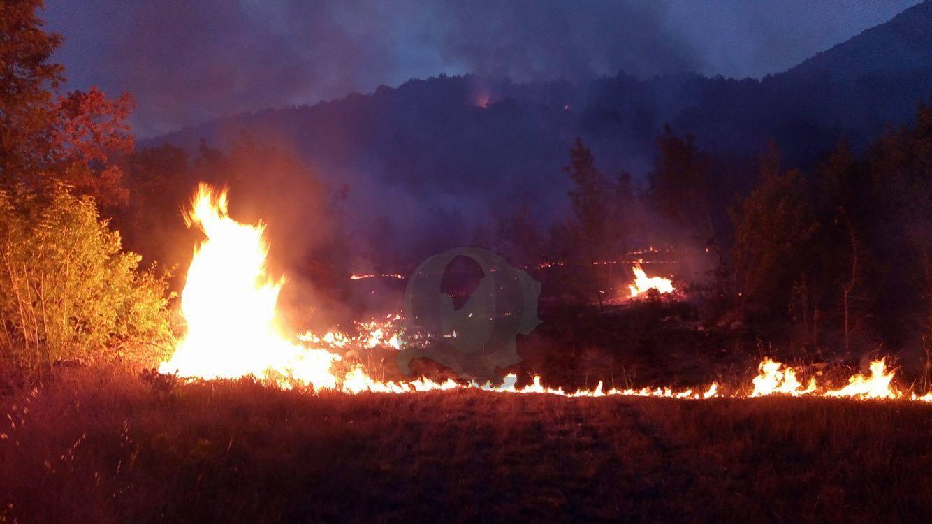 Incendio nella notte, distrutta ampia macchia di vegetazione