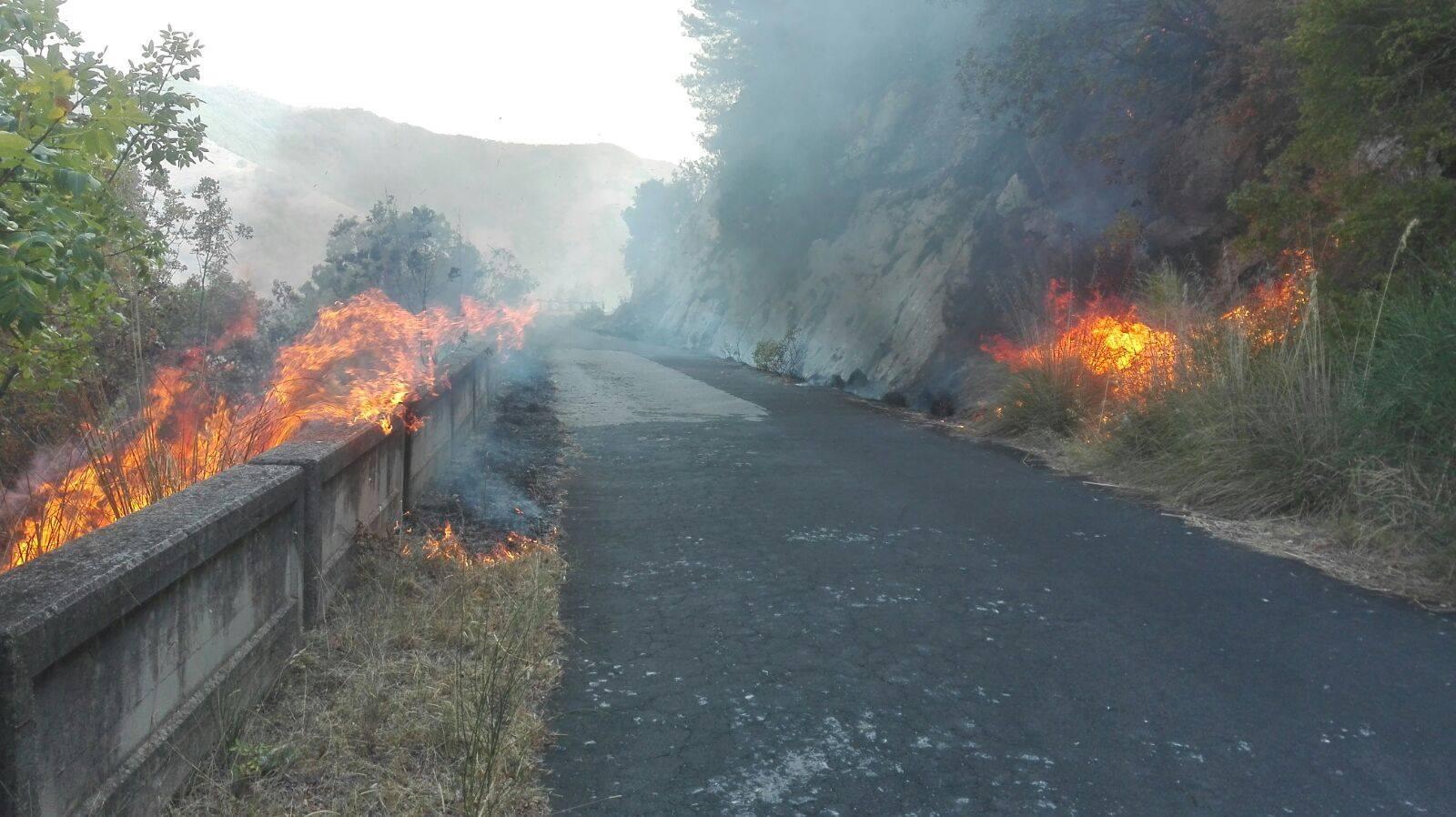 """Emergenza incendi nel venafrano, il sindaco Sorbo: """"Siamo soli, il Molise non ha più motivo di esistere…"""""""