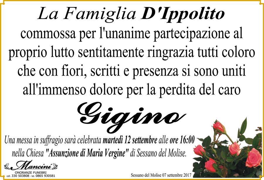 Ringraziamento Famiglia D'Ippolito – Sessano del Molise (Is)