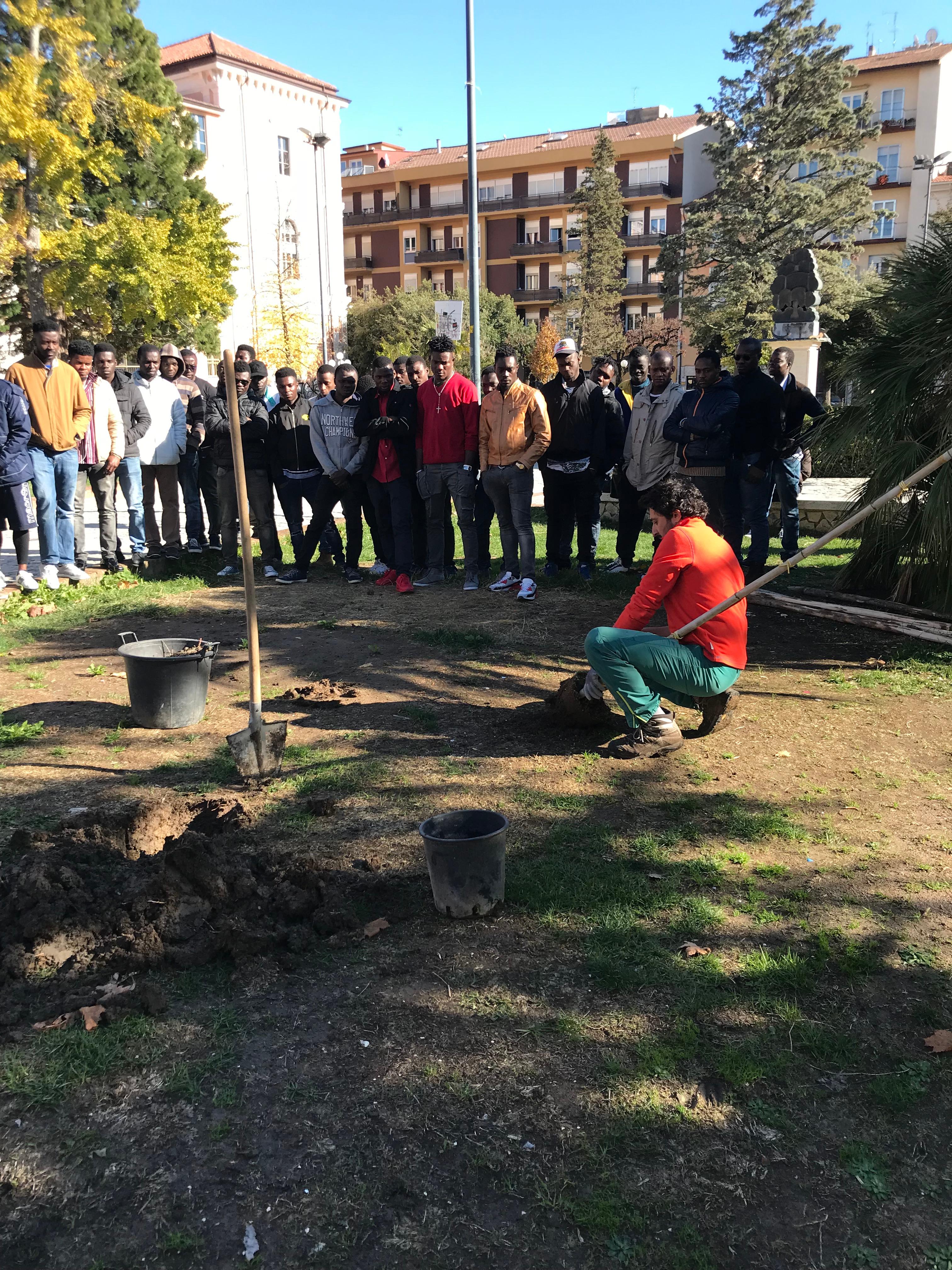 Giornata degli alberi a Villa Musenga. Iniziativa di riqualificazione del verde pubblico cittadino