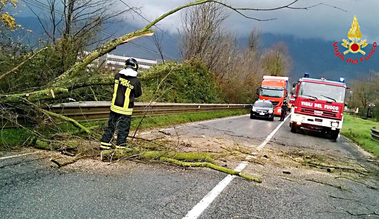 Maltempo, danni in tutta la provincia (FOTO)