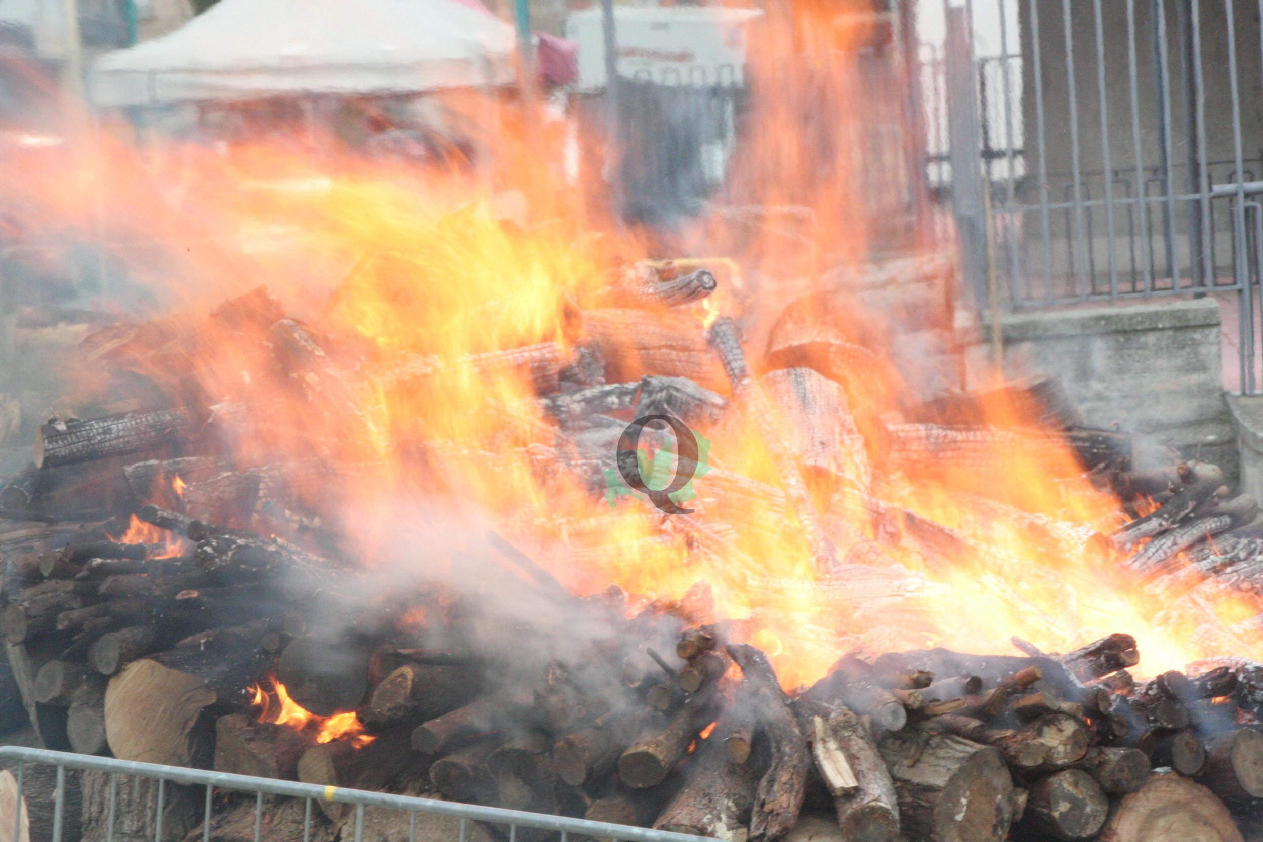 Il fuoco di Sant'Antonio Abate rinnova la tradizione e accende il Carnevale