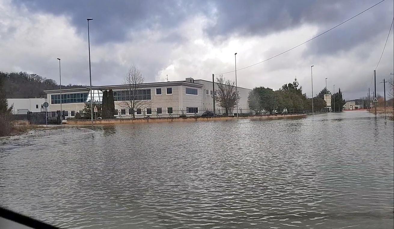 """Allarme fiume Carpino. Gli imprenditori: """"Nostre aziende a rischio"""""""