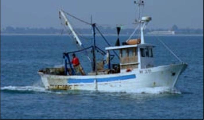 Sconfina nelle acque croate, rilasciato peschereccio termolese