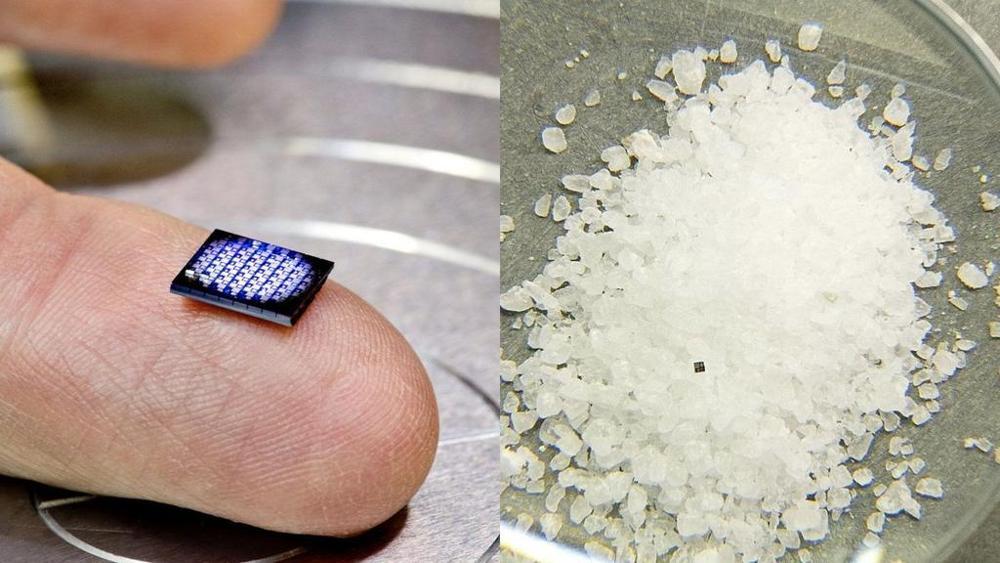 Il computer grande quanto un chicco di sale