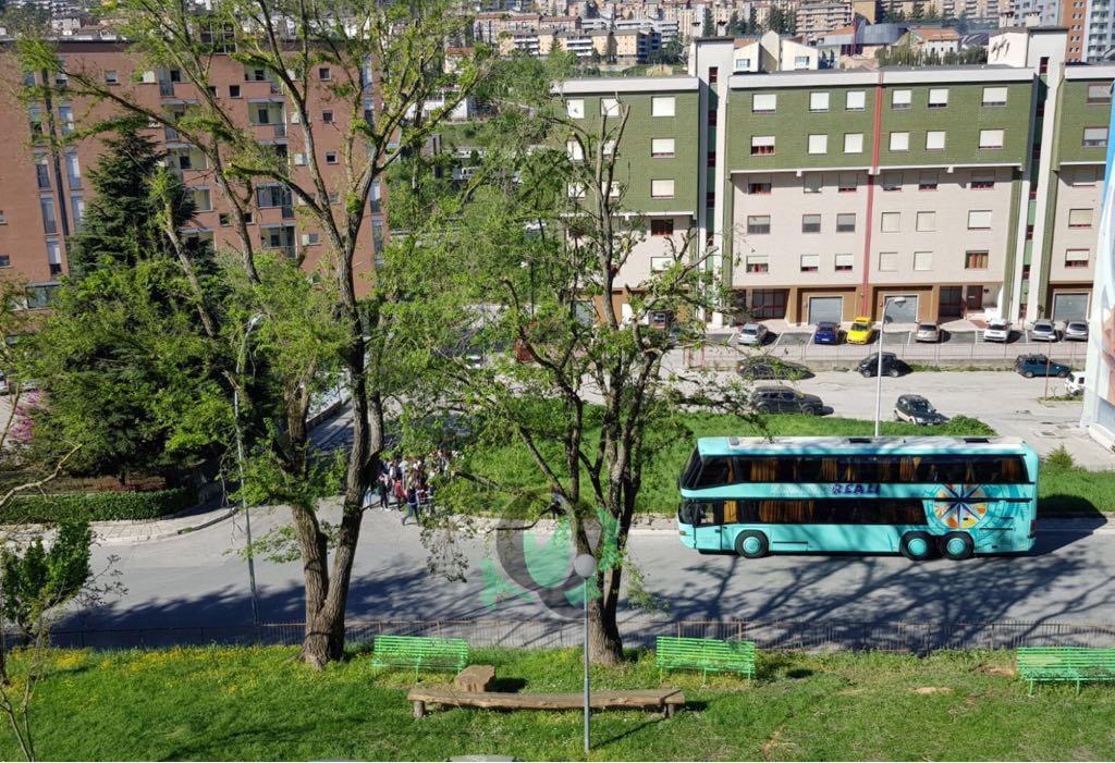 Campobasso, scolaresca di Porto San Giorgio alla scoperta della street art