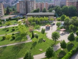 """""""Compiti-Amo"""", mercoledì la chiusura del progetto presso il parco di San Giovanni"""
