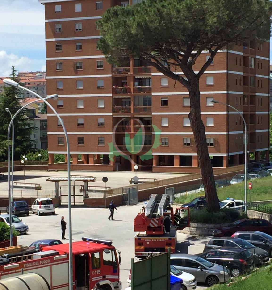 Vigili del fuoco al lavoro per la messa in sicurezza di un albero