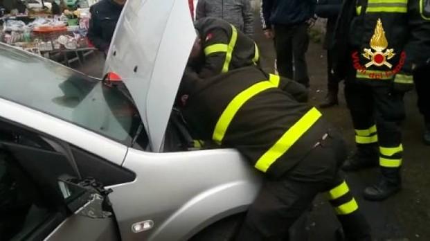 Gattino incastrato nel motore di un'auto, salvato dai Vigili del fuoco