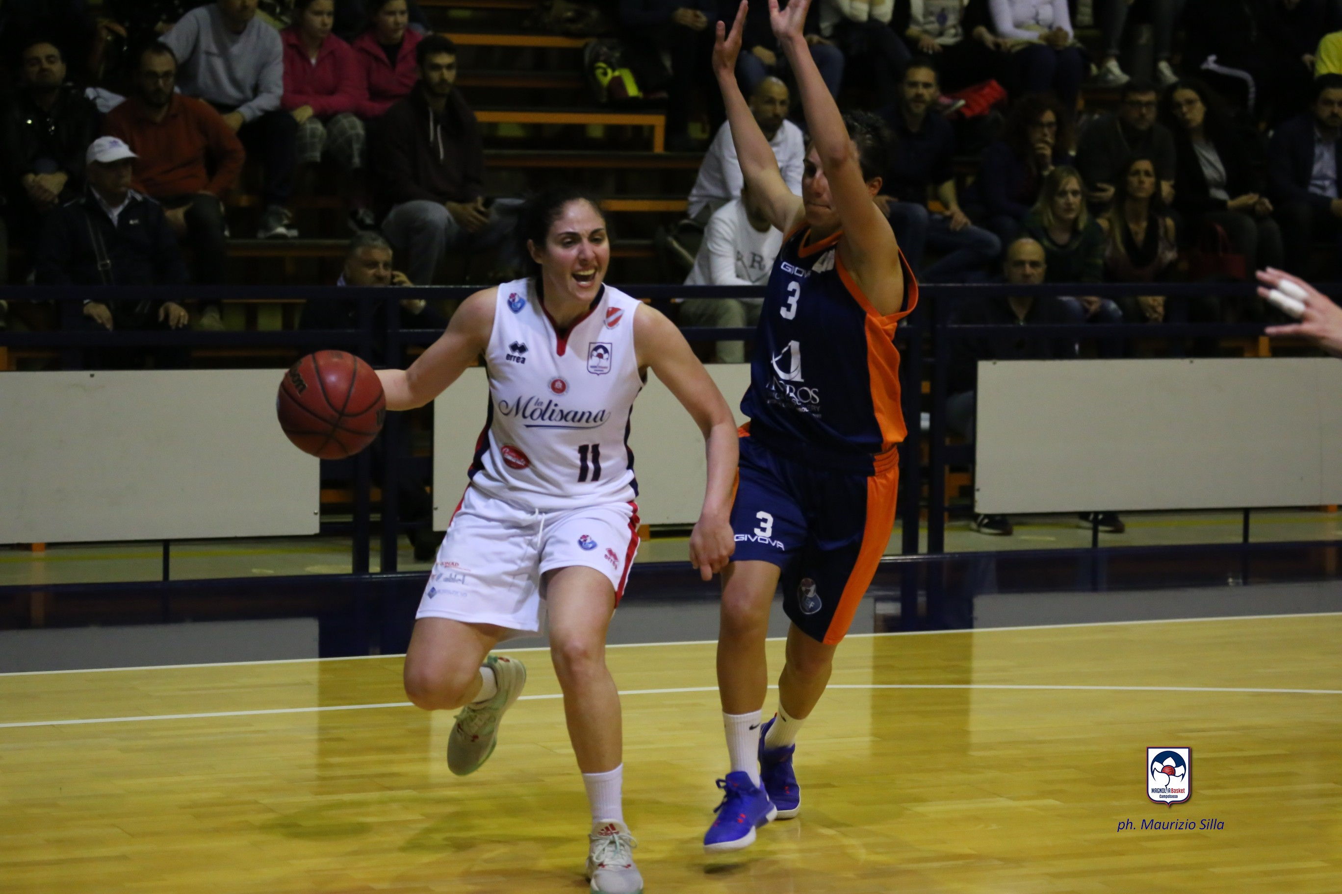 Basket, dopo Ciavarella anche Di Gregorio resta nel progetto Magnolia
