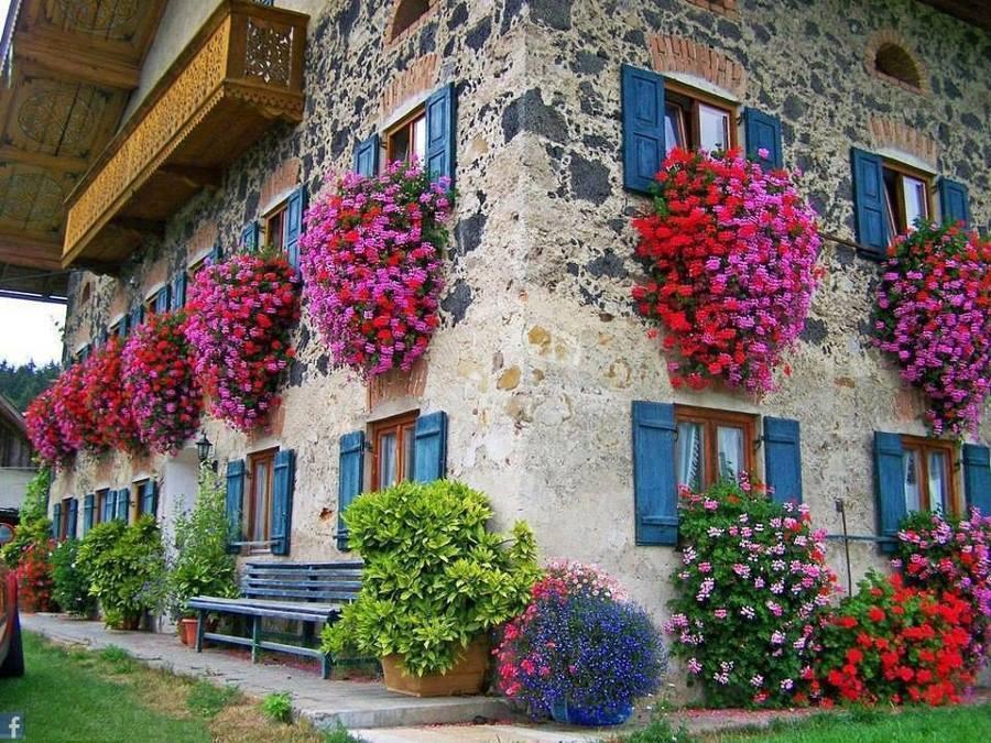 Agosto in fiore, al via il concorso per l'arredo più bello