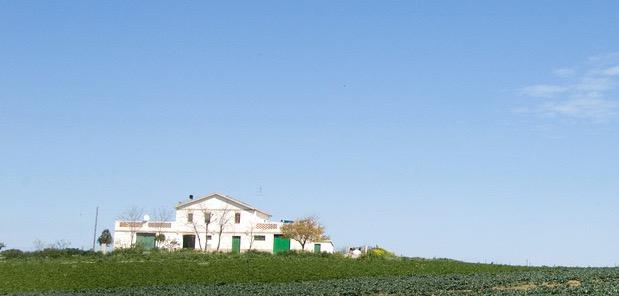Furto di quattro trattori in una fattoria, colpo da centinaia di migliaia di euro