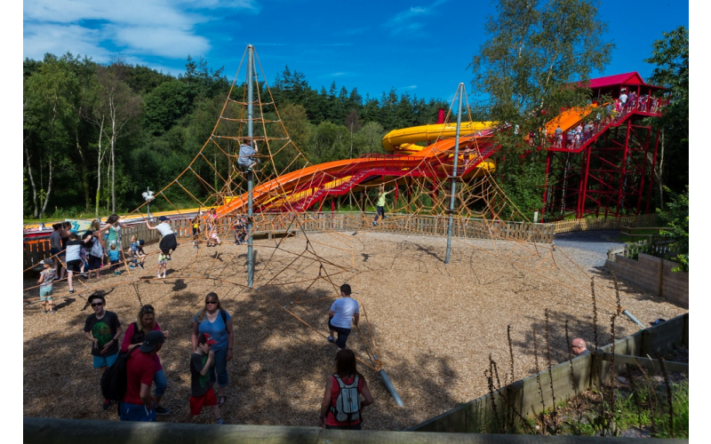 Win a Family Day Ticket to GreenWood Forest Park