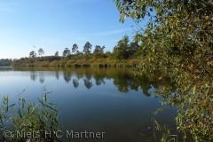 Søen ved Gelsted, som støder op til Tybrind Skoven.