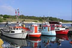 Billledet er taget i Bakkerne Bådehavn i Østre Sømarken.