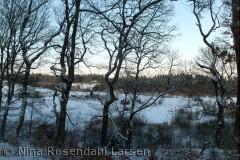 Rørbæk Sø s for Nr. Snede. ninarlarsen@yahoo.dk
