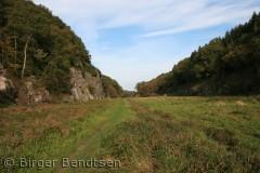 Billeddet er taget en smuk efterårsdag i Ekkodalen.  Birger Bendtsen bjbendtsen@gmail.com