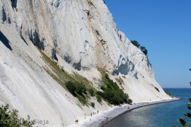 Billede fra Møns klint, 24. Juli 2012.  Sophia Sieja Winthersieja@hotmail.com