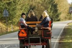 Hestevognskørsel i Himmerland