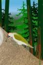 Grønspætte_animation