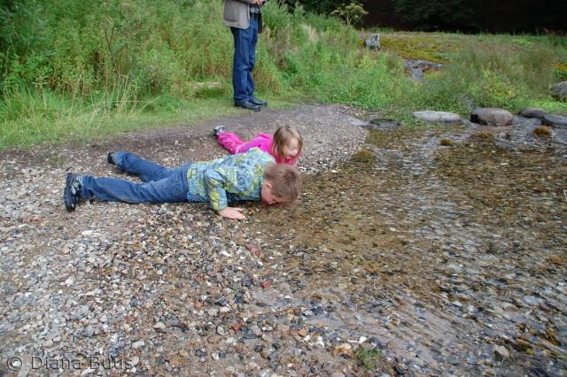 Børnene elskede turen hvor vi skulle smage på de rene kilder, og inden de turde smage skulle de sikre sig mange gange om det nu også var okay at drikke af det vand der var på jorden