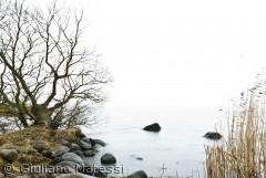 Horisonten forsvinder i tåge på Arresø.