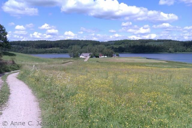 Ligger næsten helt ude på næbet i Tystrup sø