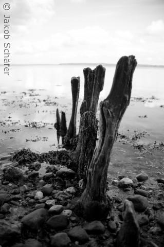 gamle stolper i vandkanten nær waldemarslot