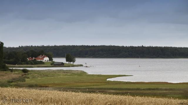 Roskilde fjord med Bognæs i baggrund