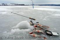 Isfiskeri