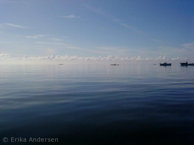 """Billedet er taget i forbindelse med """"open water"""" på Ringkøbing Fjord, den 11. august 2012.  Her var jeg følgekajak for Mie Andresen, der svømmede fra Lyngvig Havn til Ringkøbing Havn, en strækning på ca. 9 km."""