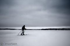 Skiløber på Roskilde fjord