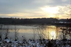 Hastrup Sø i skoven øst for Brande ninarlarsen@yahoo.dk