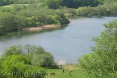 Set fra bakkerne i søens sydende.