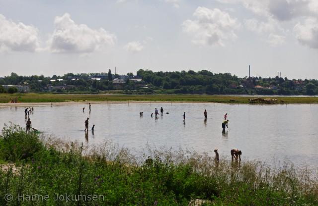 Badende ved Sønderø, Vigen Camping,Roskilde
