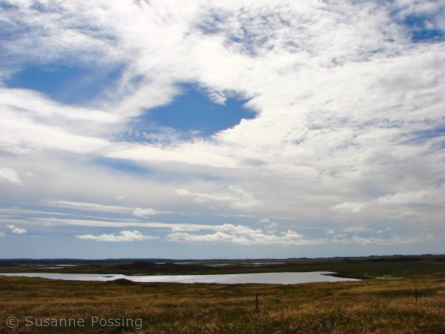 Set fra Tved Kliplantage, øst for Blegesø