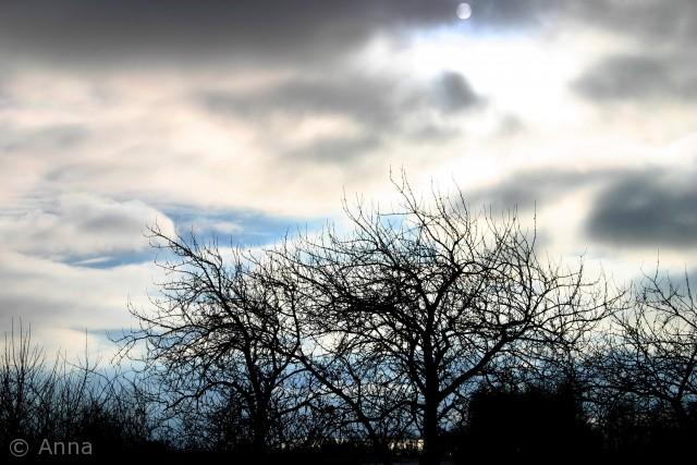 Den smukkeste iskolde himmel og endda med et glimt af månen! Navn: Anna Ellermann.