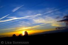 På vej hjem den 7. sept 2012, tegnede flyene streger på himlen, solen malede et orangegult område og træerne tilføjede lidt mørkt dramatik