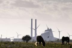 Hestekraft, kulkraft og vindkraft konkurrerer om pladsen i landskabet på Københavns Vestamager.