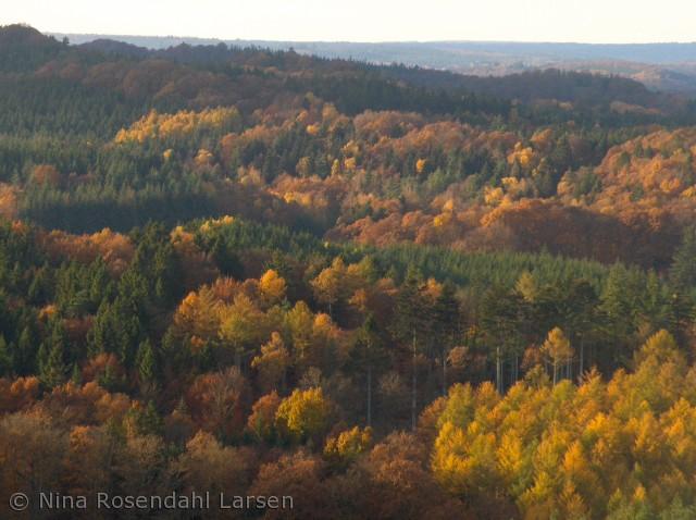 Taget fra Himmelbjerget - et af de klart smukkeste steder i Danmark. ninarlarsen@yahoo.dk