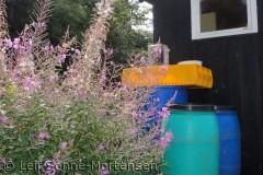 Fra fiskerskur ved Helligpeder - dejlig farvesymfoni