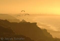 En flok friske paragliders der flyver langs vesterhavet
