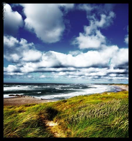 Vesterhavet en sommerdag ved Thys kant.. Skyerne danser med vinden ind over land, og vinden bærer den friske luft ind over hele nationalparken, så alting kan ånde.   Sara Sandahl saravinder@hotmail.com