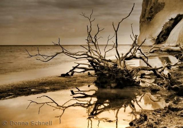 Billedet er taget ved Møns Klint en stille dag efter en storm...